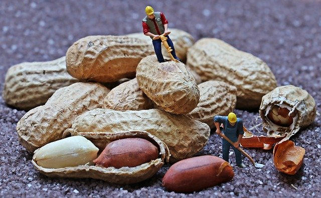 lavoratori-in-miniatura
